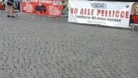 Il sole splende nel pomeriggio su Piazza del Popolo. A Roma, sabato 19 settembre, artisti italiani, internazionali, associazioni animaliste e 121 volontari hanno dato voce a chi non ne ha: […]
