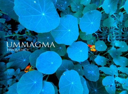 Frequency, gli Ummagma