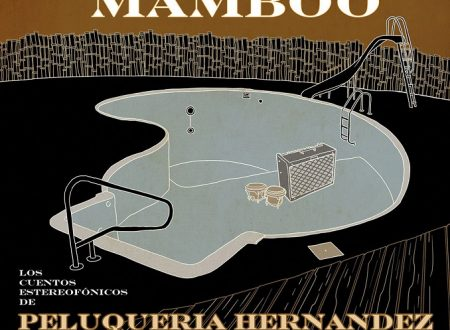 Mamboo dei Peluqueria Hernandez, la provincia, il vinile, l'alta fedeltà